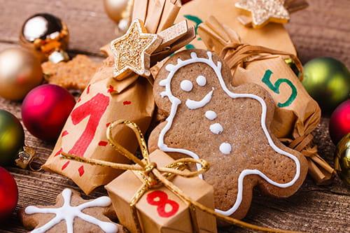 Visuel Noel en Bio - biscuit de noel
